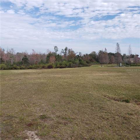 6025 Rolling Vista Loop, Dover, FL 33527 (MLS #T3223642) :: The Duncan Duo Team