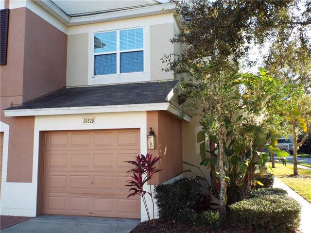26528 Castleview Way, Wesley Chapel, FL 33544 (MLS #T3223671) :: Lockhart & Walseth Team, Realtors