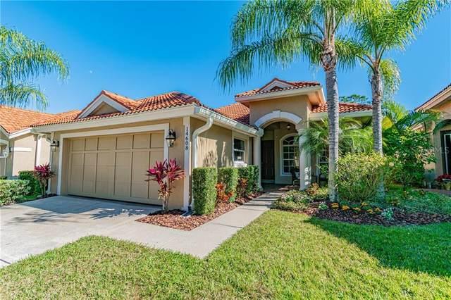 14608 Mirasol Manor Court, Tampa, FL 33626 (MLS #T3223834) :: Griffin Group