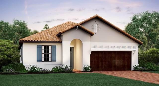16822 Whisper Elm Street, Wimauma, FL 33598 (MLS #T3223838) :: Lovitch Group, LLC