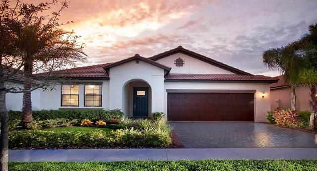16820 Whisper Elm Street, Wimauma, FL 33598 (MLS #T3223852) :: Lovitch Group, LLC