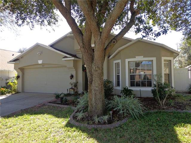447 Country Vineyard Drive, Valrico, FL 33594 (MLS #T3223872) :: The Duncan Duo Team