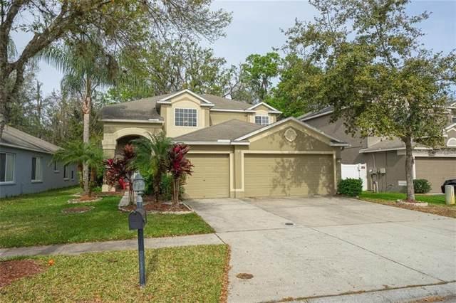 10502 Lucaya Drive, Tampa, FL 33647 (MLS #T3223896) :: 54 Realty