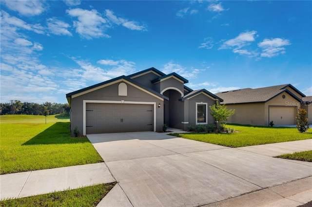7043 Crested Orchid Drive, Brooksville, FL 34602 (MLS #T3223995) :: Team Bohannon Keller Williams, Tampa Properties