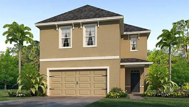 10135 Mangrove Well Road, Sun City Center, FL 33573 (MLS #T3224117) :: 54 Realty