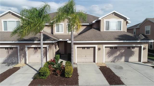 10329 Willow Leaf Trail, Tampa, FL 33625 (MLS #T3224285) :: The Light Team