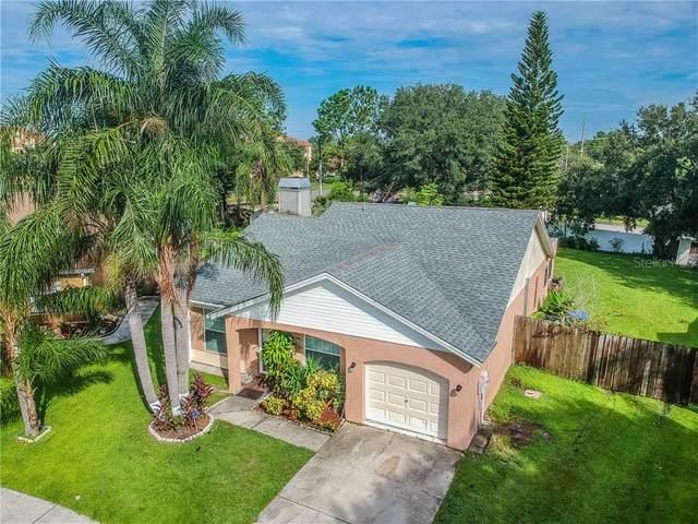 1404 Woodstork Drive, Brandon, FL 33511 (MLS #T3224294) :: Griffin Group