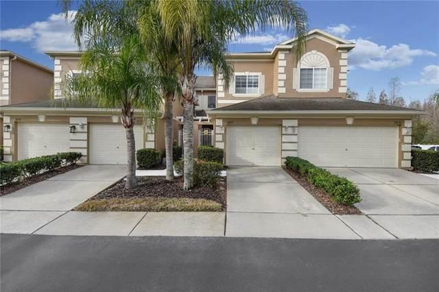 18122 Nassau Point Drive, Tampa, FL 33647 (MLS #T3224317) :: 54 Realty
