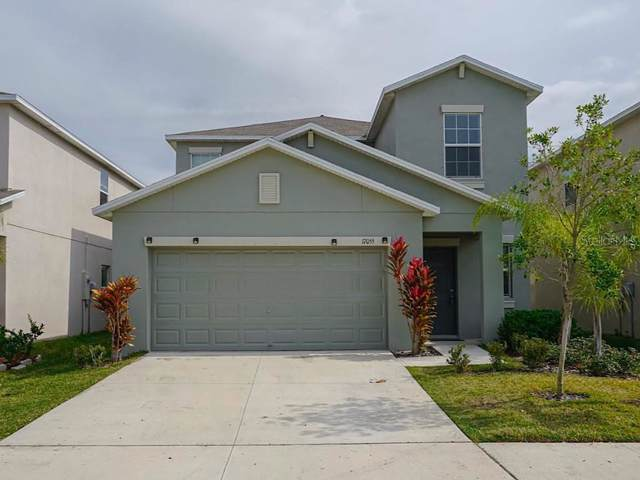 17055 Peaceful Valley Drive, Wimauma, FL 33598 (MLS #T3224425) :: Griffin Group