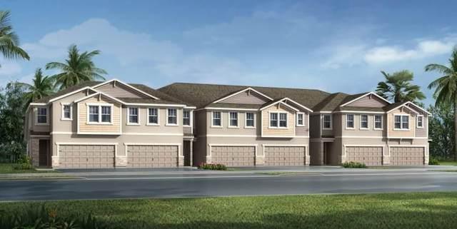 6234 Scarlet Darter Way 88/M, Tampa, FL 33625 (MLS #T3224530) :: Icon Premium Realty