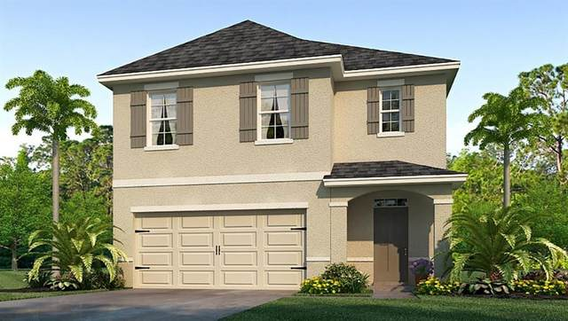 16718 Trite Bend Street, Wimauma, FL 33598 (MLS #T3224566) :: The Price Group
