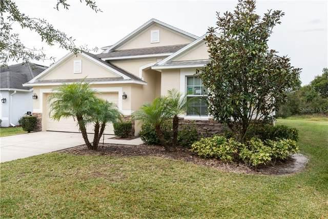 4025 Warwick Hills Drive, Wesley Chapel, FL 33543 (MLS #T3224568) :: Griffin Group