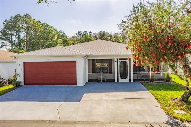 29262 Princeville Drive, San Antonio, FL 33576 (MLS #T3224690) :: Delgado Home Team at Keller Williams