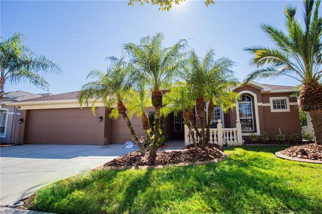 12910 Castlemaine Drive, Tampa, FL 33626 (MLS #T3224725) :: Griffin Group