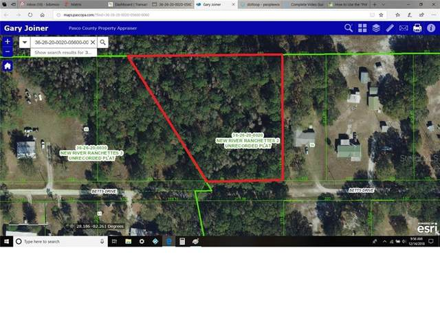 Wesley Chapel, FL 33543 :: Young Real Estate