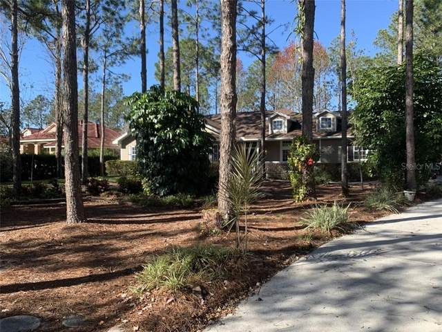 17408 Brown Road, Odessa, FL 33556 (MLS #T3224807) :: Team Bohannon Keller Williams, Tampa Properties