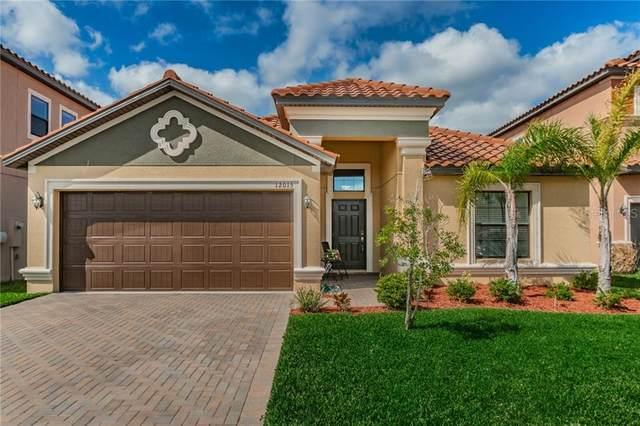 12015 Cardinal Flower Drive, Riverview, FL 33579 (MLS #T3224809) :: Griffin Group