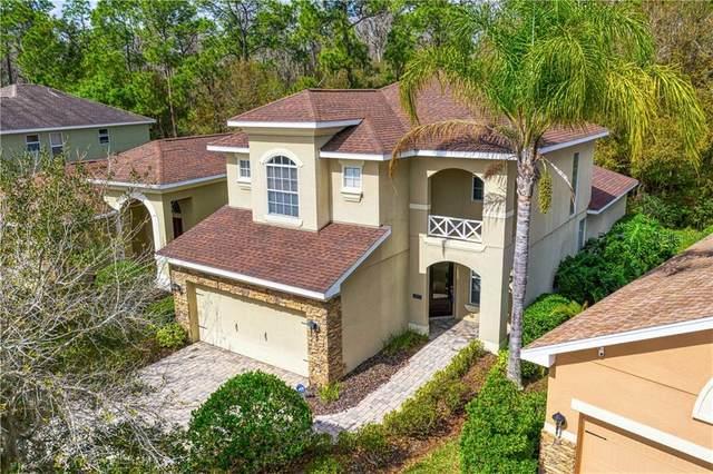 16078 Bella Woods Drive, Tampa, FL 33647 (MLS #T3224866) :: Premier Home Experts