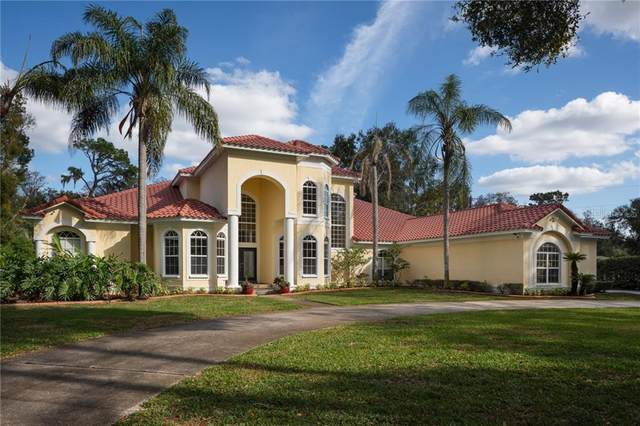 7223 N Mobley Road, Odessa, FL 33556 (MLS #T3224915) :: Team Bohannon Keller Williams, Tampa Properties