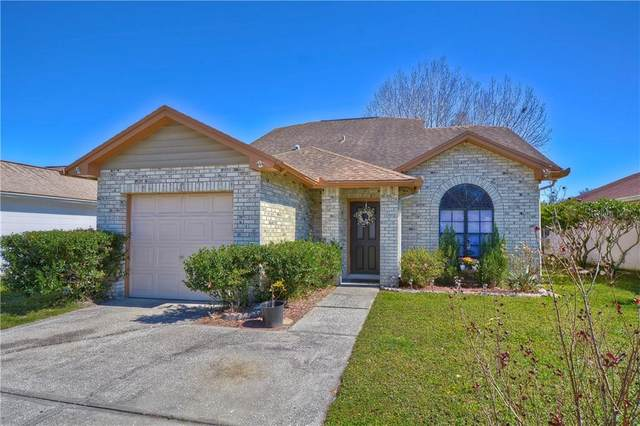 12844 Dunhill Drive, Tampa, FL 33624 (MLS #T3224935) :: 54 Realty
