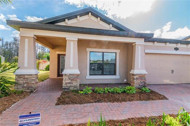 19545 Whispering Brook Drive, Tampa, FL 33647 (MLS #T3224946) :: 54 Realty