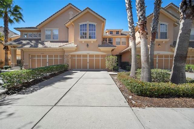 14427 Mirabelle Vista Circle, Tampa, FL 33626 (MLS #T3224983) :: 54 Realty