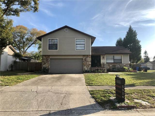 5516 Raven Court, Tampa, FL 33625 (MLS #T3225025) :: The Duncan Duo Team