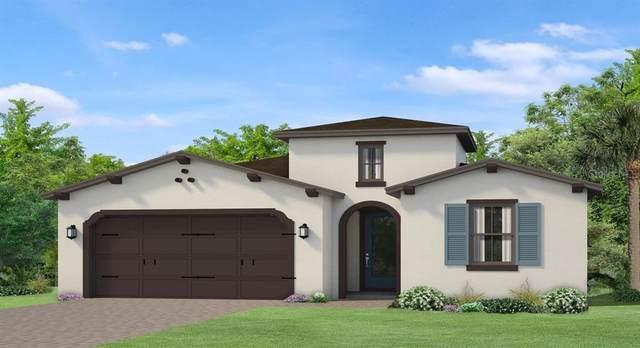 4965 Tivoli Drive, Wesley Chapel, FL 33543 (MLS #T3225085) :: Charles Rutenberg Realty