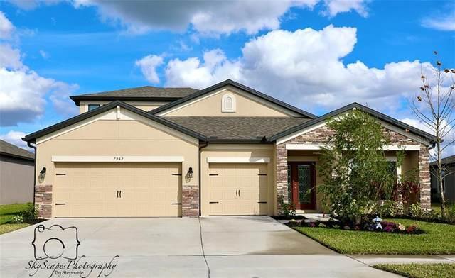 7932 Lago Mist Way, Wesley Chapel, FL 33545 (MLS #T3225140) :: Premium Properties Real Estate Services