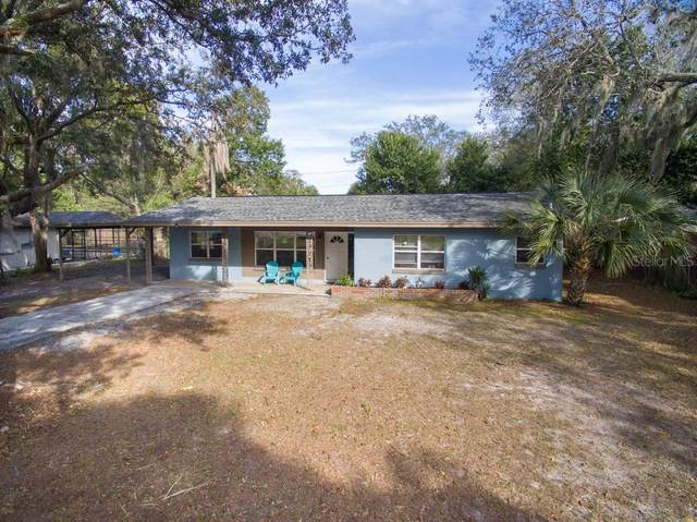 8009 Cardinal Drive, Tampa, FL 33617 (MLS #T3225142) :: Griffin Group