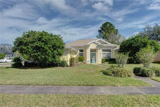 607 Crystal Clear Lane, Lutz, FL 33548 (MLS #T3225155) :: Burwell Real Estate