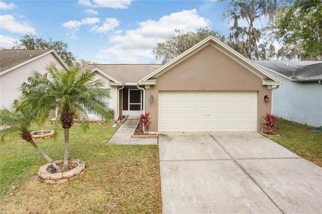1210 Tiger Wood Court, Valrico, FL 33596 (MLS #T3225156) :: Alpha Equity Team