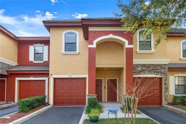 2250 Portofino Place #236, Palm Harbor, FL 34683 (MLS #T3225221) :: GO Realty