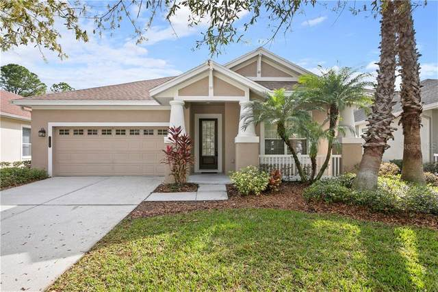 20038 Heritage Point Drive, Tampa, FL 33647 (MLS #T3225224) :: The Nathan Bangs Group