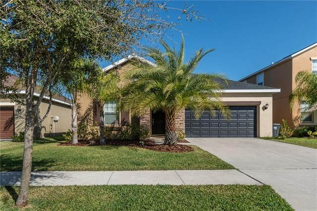 11826 Valhalla Woods Drive, Riverview, FL 33579 (MLS #T3225301) :: The Duncan Duo Team