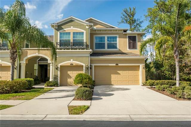 12512 Silverdale Street, Tampa, FL 33626 (MLS #T3225380) :: Griffin Group