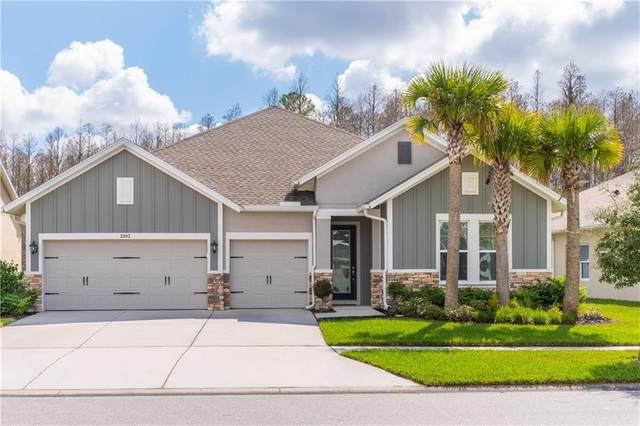 2902 Long Bow Way, Odessa, FL 33556 (MLS #T3225410) :: Griffin Group