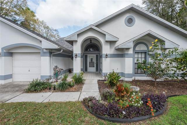 1416 Clarion Drive, Valrico, FL 33596 (MLS #T3225432) :: Griffin Group