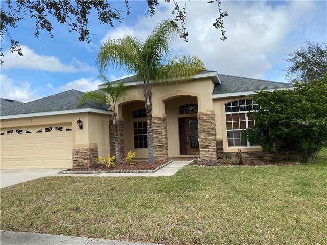 10828 Rockledge View Drive, Riverview, FL 33579 (MLS #T3225440) :: Premium Properties Real Estate Services