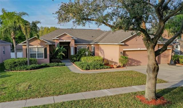 3904 Smoke Rise Court, Valrico, FL 33594 (MLS #T3225446) :: Dalton Wade Real Estate Group