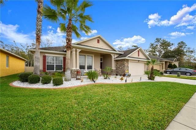 7410 Ambleside Drive, Land O Lakes, FL 34637 (MLS #T3225470) :: 54 Realty