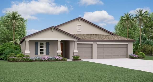 10831 Crushed Grape Drive, Riverview, FL 33578 (MLS #T3225539) :: EXIT King Realty