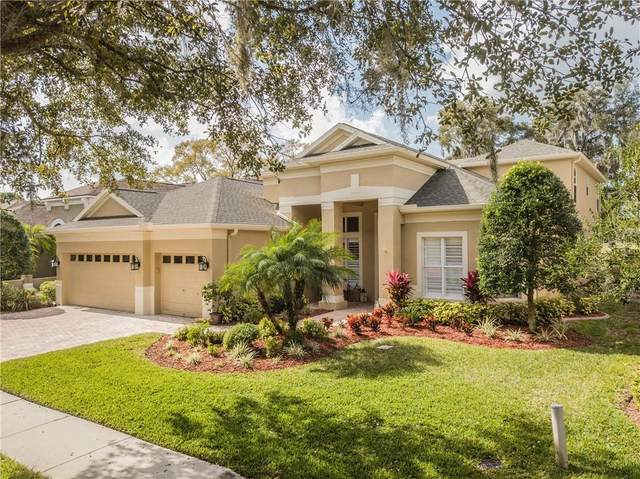 3611 Cordgrass Drive, Valrico, FL 33596 (MLS #T3225563) :: Griffin Group