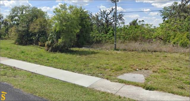 0 Us Hwy 301 Highway, Dade City, FL 33525 (MLS #T3225598) :: Heart & Home Group