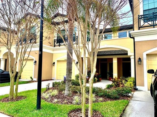11620 Crowned Sparrow Lane, Tampa, FL 33626 (MLS #T3225612) :: 54 Realty