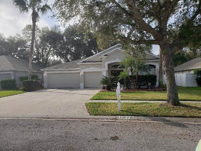 1916 Samantha Lane, Valrico, FL 33594 (MLS #T3225620) :: Mark and Joni Coulter | Better Homes and Gardens