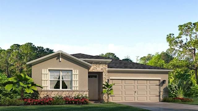 11929 Cross Vine Drive, Riverview, FL 33579 (MLS #T3225622) :: Team Borham at Keller Williams Realty