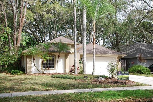 4517 Hidden Shadow Drive, Tampa, FL 33614 (MLS #T3225675) :: The Light Team
