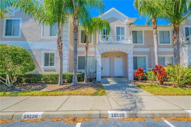 18126 Paradise Point Drive, Tampa, FL 33647 (MLS #T3225724) :: 54 Realty