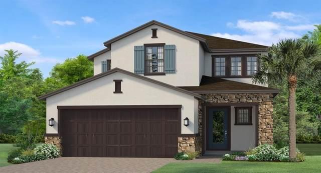 4547 San Martino Drive, Wesley Chapel, FL 33543 (MLS #T3225771) :: Charles Rutenberg Realty